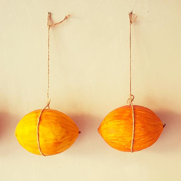 Melones Diamante Colgados